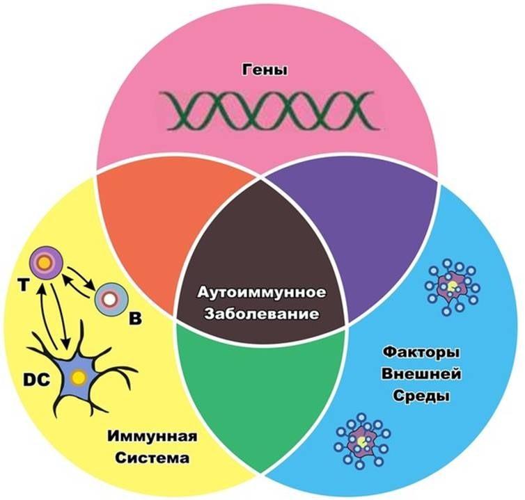 Генетика сахарного диабета 1 типа..Диабет, сахарный диабет, СД1 типа, СД 2 типа, Правило 15.